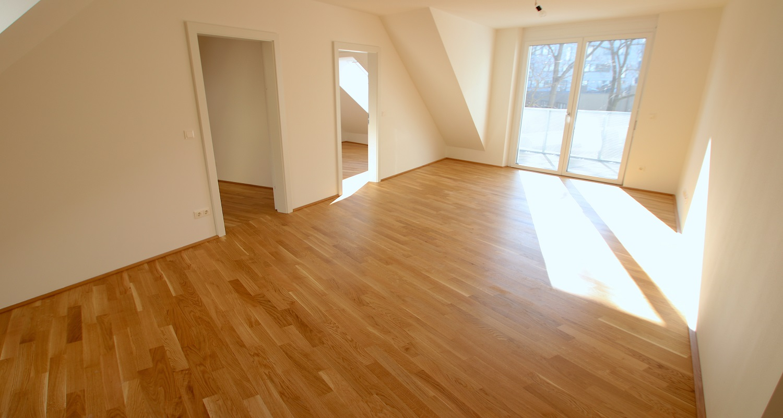 das schopenhauer traumwohnung gesucht in wien 1180. Black Bedroom Furniture Sets. Home Design Ideas