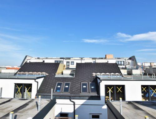 Altbaucharme & Schick im Dach